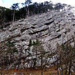 Felsen des Sierningtals / Rocks of the Sierning valley