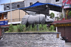 Reached Sauraha at last- and no, that's not a real Rhino