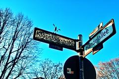 Kork in the City