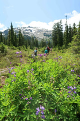 Hiking in the Callaghan Valley