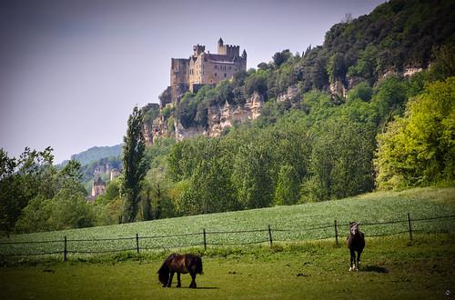 Caballos y castillo