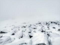 Rare Winter