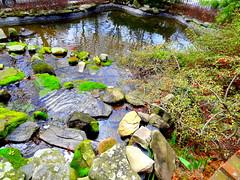 Fountain's Wilderness