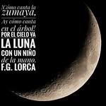 2020 - Diario Lunar 2020