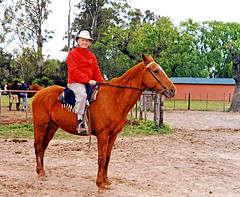 Argentina-Dennis - Horse Ride