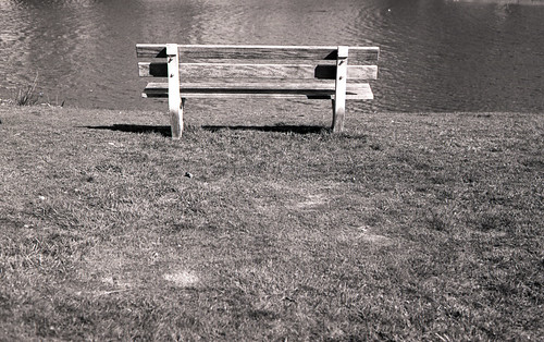 Empty bench on a sunny day