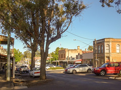 Sunny Castlemaine Morning