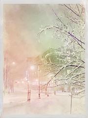 March Snowstorm, Portland, Maine