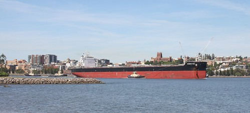BULK CARRIER 'ZHENG YAO' PORT OF NEWCASTLE 19th Mar 2020