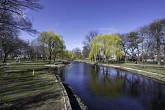 Hendrickson Park