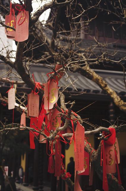 Jade Buddha Temple. Shanghai. China