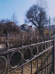 Санкт-Петербург, решётка Введенского (Пушкарского) сада, Saint Petersburg, Vvedensky (Pushkarsky) garden fence