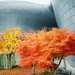 Autumn at Dongdaemun Design Plaza