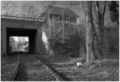 Brücken in Duisburg (III)