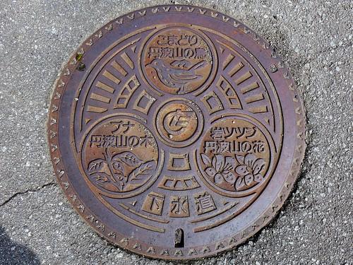 Tabayama Yamanashi, manhole cover (山梨県丹波山村のマンホール)