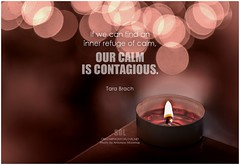 Tara Brach If we can find an inner refuge of calm, our calm is contagious