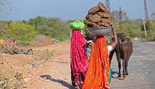 The Long Haul Rajasthan India DSC_0644