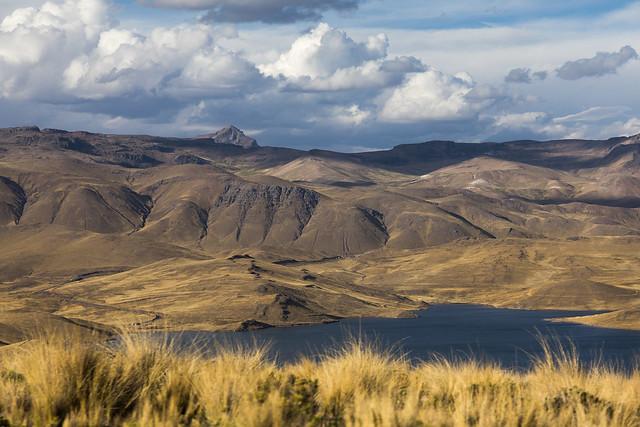 Liberté des Andes