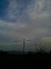 Powerlines in the field.