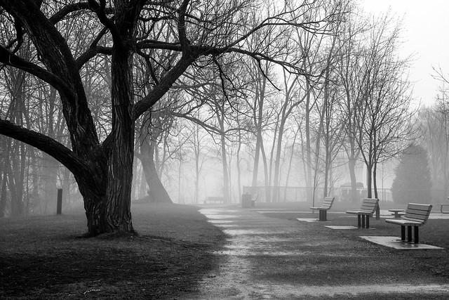 Brouillard à Ste-Rose