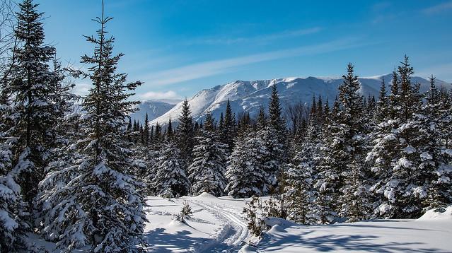 Parc de la Gaspésie en hiver