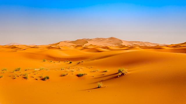 Vagues de dunes