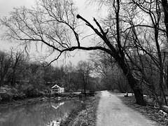 C&O Canal, Bethesda, Maryland
