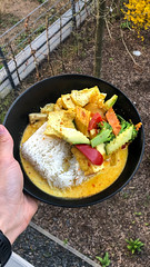 Man holds a black plate of vegan red curry with rice