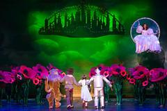 2019 Starlight Theatre: Wizard of Oz