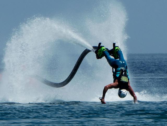 La plongée du dauphin