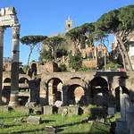 Tempio di Venere Genitrice - https://www.flickr.com/people/9851528@N02/
