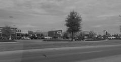 The Mall at Turtle Creek (Jonesboro, AR)
