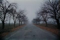 Путь в никуда II / Path to nowhere II