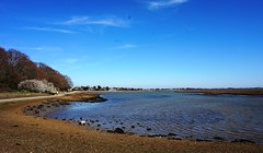 View of Langstone Harbour 1
