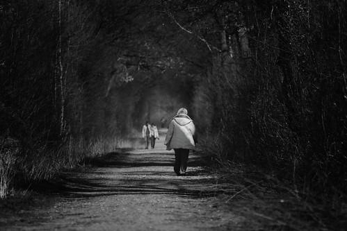 Walk of life....