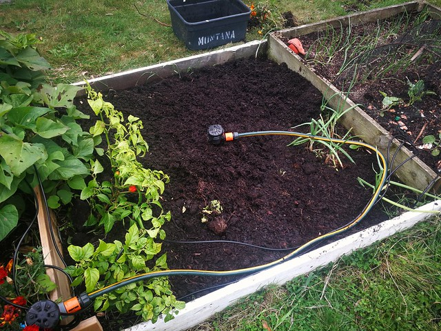Cleared out bed and added compost. Needs more soil