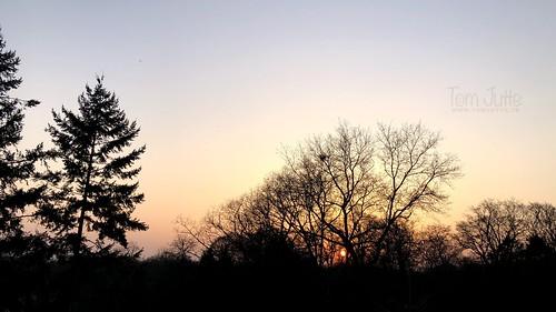 Sunset, Nieuw Beerschoten, Zeist, Netherlands - 3334