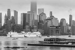 Comfort Comes to New York