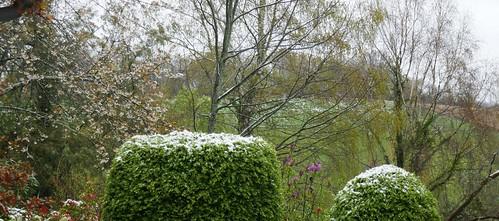 Au jardin, léger saupoudrage hivernal, Bosdarros, Béarn, Pyrénées Atlantiques, Aquitaine, France.