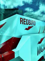 Redbird Flight Simulator Trainer