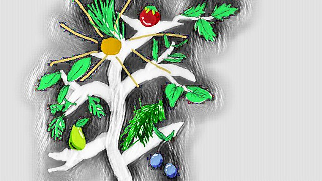 growstuff logo