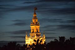 Giralda al atardecer, Nº2. Sevilla.