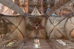 Cathedral of Santa Maria of Palma Ceiling - Spain