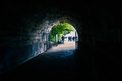 Al salir del tunel