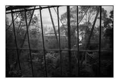 greenhouse internment