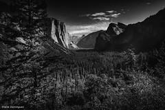 Etats-Unis Yosemite National Park Octobre 2019