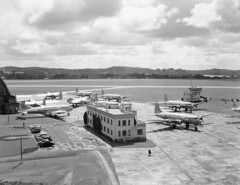 1956 Four Bristol Freighters: NZ5906, NZ5909, NZ5910, & NZ5912 and six US Navy and US Marines R5D Skymasters Serial numbers: 50855, 50876, 50857, 56530, 50864, 131600 at RNZAF Station Whenuapai,  5 Oct 1956.