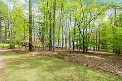 Shady, wooded, grassy, flat lot!
