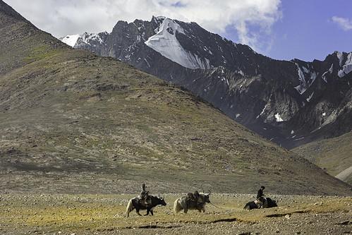 Kyrgyz men riding their yaks. Uchjilgha, Pamir Mountains. Afghanistan.