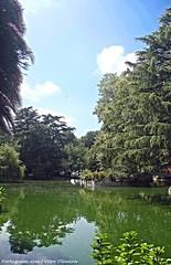 Jardins do Palácio de Cristal - Porto - Portugal 🇵🇹